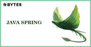 Java Spring Online Training