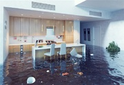 Emergency Water Extraction or Removal Services in Sarasota