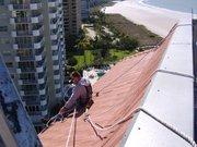 Bats In My Attic Vero Beach,  Florida