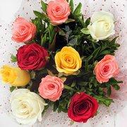 Florist Jacksonville - Spencers Jacksonville Florist FL