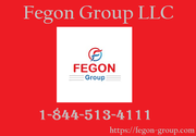 Fegon Group - 8445134111 - Best Network Security Solutions